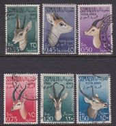 Somalia Scott C40-45 1955 Fauna, Used - Somalie (AFIS)