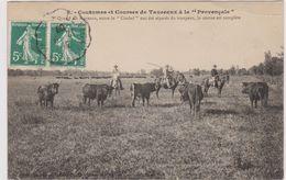 CPA - Métier - Gardians - Courses De Taureaux - Provence - Paysans