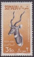 Somalia Scott C57 1958 Animals, 3s Ocher And Sepia, Mint Never Hinged - Somalie (AFIS)