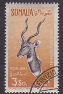 Somalia Scott C57 1958 Animals, 3s Ocher And Sepia, Used - Somalie (AFIS)
