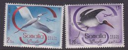 Somalia Scott C59-60 1959 Birds, Mint Never Hinged - Somalie (AFIS)