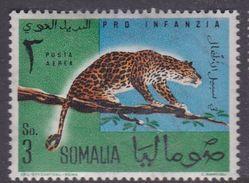 Somalia Scott C72 1960 Animals 3s Leopard, Mint Never Hinged - Somalia (AFIS)
