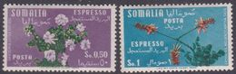 Somalia Scott E10-11 1955 Flowers Special Delivery Stamp, Mint Never Hinged - Somalia (AFIS)