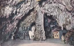 RR. Grotte Demaniali Di Postumia Presso Trieste - L'Ufficio Delle RR. Poste Nelle Grotte (894) - Slovénie