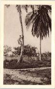 AFRIQUE -- GABON -- A L'assaut D'un Cocotier - Gabon