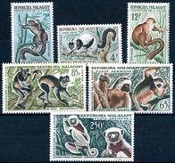 "MADAGASCAR  1961  MNH   -  "" FAUNE - LEMURIENS ""  -  6 VAL - Madagascar (1960-...)"