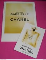 CHANEL * GABRIELLE * BIC DOUBLE CARD* + EXTRA CARD* - Modernas (desde 1961)