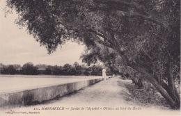 Marrakech Jardin De L'Aguedal Oliviers Au Bord Du Bassin Félix - Marrakech
