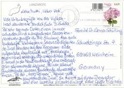 Spanien Mi. 4391 Blume Hortensie MWST Correos Y Telegrafos Las Palmas 2009 - Poststempel - Freistempel