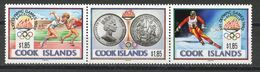COOK ISLANDS - 1992 ALBERTVILLE OLYMPICS  O450 - Winter 1992: Albertville