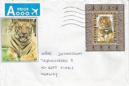 Feuillet : Le Tigre De Sibérie,  Sur Lettre 2016 Adressée En Norvège - Belgien