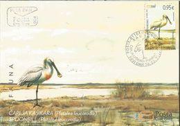 CG 2017-03 BIRDS SPOONBILL, CRNA GORA MONTENEGRO, FDC - Storchenvögel