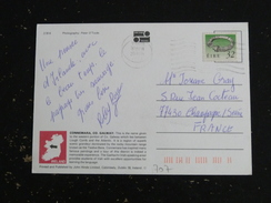 IRLANDE IRELAND EIRE YT 707 COLLIER DE BROIGHTER - CONNEMARA - 1949-... République D'Irlande