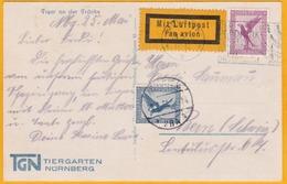 1930 - CP Par Avion De Nurenberg, Allemagne  Vers Berne, Suisse - 35 Pf Aigle - Tiergarten - Tigre - Airmail