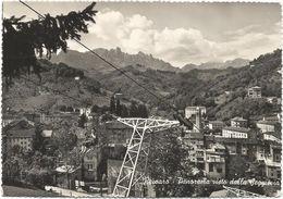 Z4659 Recoaro Terme (Vicenza) - Panorama Visto Dalla Seggiovia / Viaggiata 1952 - Altre Città