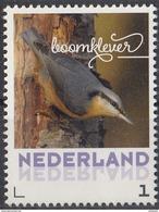 Nederland - September 2017 - Herfstvogels - Boomklever - Vogels/birds/vögel/oiseaux - MNH - Niederlande