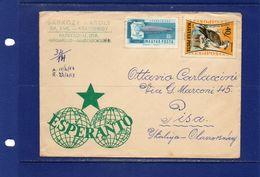 ##(003)POSTAL HISTORY - Hungary- 1963 -    Cover From Rakoshegy  To Pisa (Italy)  - Esperanto - Hungría