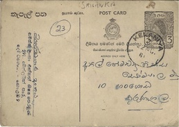 1961- C P E P   From KELANIYA  ( Internal Mail ) - Sri Lanka (Ceylan) (1948-...)
