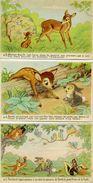 WALT DISNEY - Lot De 3 Cartes De Bambi. - Disney