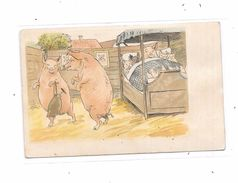 10241 - CPA COCHONS, - Schweine