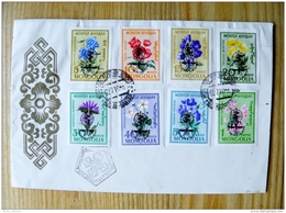 FDC Cover From Mongolia Flowers Flora OVERPRINTS Insects Lutte Contre Le Paludisme 1962 - Mongolia
