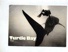 Carte Plongee Turtel Bay Cachet  Sue Amethyste - Animaux & Faune