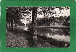 45  BRIARE  LES BORDS DU CANAL  CPSM Dentelée En PF Année 1954 Collection G LEBLOND  N°14 - Briare