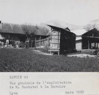 Agriculture - Agronomie - La Ravoire Savoie - Exploitation M. Duchâtel Construction Bâtiments - Lot De 9 Photographies - Cultures