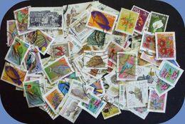 RSA Collection + 160 TP Diff > 0,03€ Le TP Nombreuses Thématiques Faune, Flore, ... - Afrique Du Sud (1961-...)