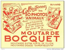 -BUVARD - MOUTARDE BOCQUET    état LUXE - Food