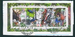 Belarus 2014 Naliboki Sanctuary Fauna Birds Butterfly Insects Carnet S/sheet Used On Piece - Belarus