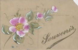 Carte Porcelaine Celluloïd - Peinte - Souvenir - Cartes Porcelaine
