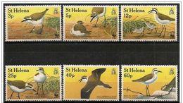 St. Helena/ Saint Helene: Corriere Di San'Elena (Charadrius Sanctaehelenae) WWF - W.W.F.