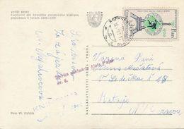 M0167 - Czechoslovakia (1965) Rozmberk Nad Vltavou (postcard: Vyssi Brod); Tariff: 30h (stamp: 1900 Frantisek Janda-Suk) - Summer 1900: Paris