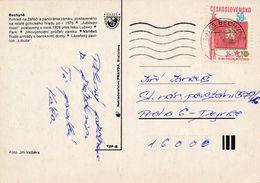 M0177 - Czechoslovakia (1980) 391 65 Bechyne (machine Postmark); Tariff: 50h (stamp: 35 Years Police (= SNB)) - Police - Gendarmerie