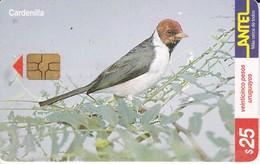Nº 132 TARJETA DE URUGUAY DE ANTEL DE UNA CARDENILLA (PAJARO-BIRD)  (CHIP G4 NEGRO) - Uruguay