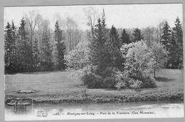 77- Montigny Sur Loing - Parc De La Trentaine (clos Montalais) - France