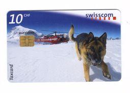 Carta Telefonica Svizzera - Cane 10 CHF  -  Carte Telefoniche@Scheda@Schede@Phonecards@Telecarte@Telefonkarte - Switzerland