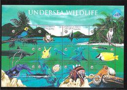 Djibouti 1998 Année Internationale Des Océans Faune Bloc De 12 Valeurs Neuf ** - Dschibuti (1977-...)