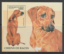 BLOC NEUF DU BENIN - CHIEN RHODESIAN RIDGEBACK N° Y&T 35 - Hunde