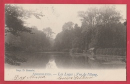 Anderlues - Les Loges : Vue De L'étang - 1902 - 1 ( Voir Verso ) - Anderlues