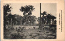 AFRIQUE --  GUINEE Portugaise - Récolte Des Arachides Chez Les Mancagnes - Guinée Equatoriale