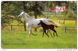 TARJETA DE JAPON DE UNOS CABALLOS DE 105 UNITS (430-216-1990) CABALLO-HORSE - Japón