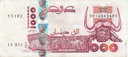 BILLETE DE ARGELIA DE 1000 DINARS DEL AÑO 1998 CALIDAD MBC (VF) (BANKNOTE) - Argelia