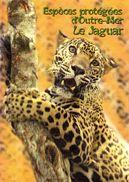 """Encart 1er Jour De 2007 """" ESPECES PROTEGEES : LE JAGUAR DE GUYANE """" N° YT 4035. Voir Les 2 Scans. - FDC"""