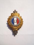 ----1- Insigne Militaire Pince A Cravate- R F CONSEIL MUNICIPAL (( ARTHUS BERTRAND PARIS)) - - Autres
