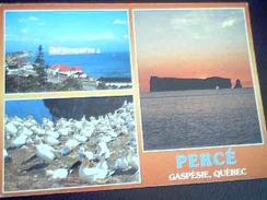 Percé Gaspésie  Utilisée  Avec Timbre 1992 - Percé