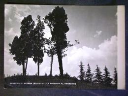 LOMBARDIA -MILANO -BESANA MONZA -F.G. LOTTO N°592 - Milano