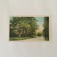 SEVENOAKS 1906 'The Seven Oaks' Colour Used - England