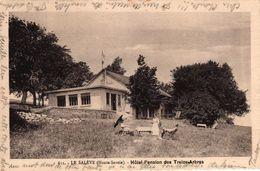 LA SALEVE -74- HOTEL PENSION DES TREIZE ARBRES - Francia